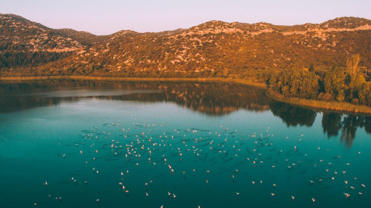 galebovi-na-bacinskim-jezerima