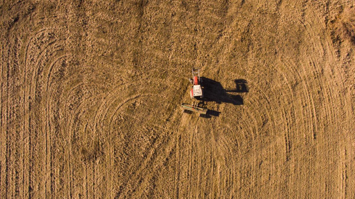 nature of croatia, fields in Slavonia